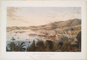 "The Miriam and Ira D. Wallach Division of Art, Prints and Photographs: Print Collection, The New York Public Library. ""View of the town of St. Thomas, in the West Indies."" The New York Public Library Digital Collections. 1843."
