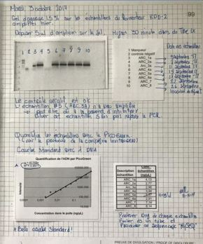 Le cahier de laboratoire, un documentd'archives