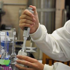 Les données de recherche : comment évaluer pour mieuxconserver?